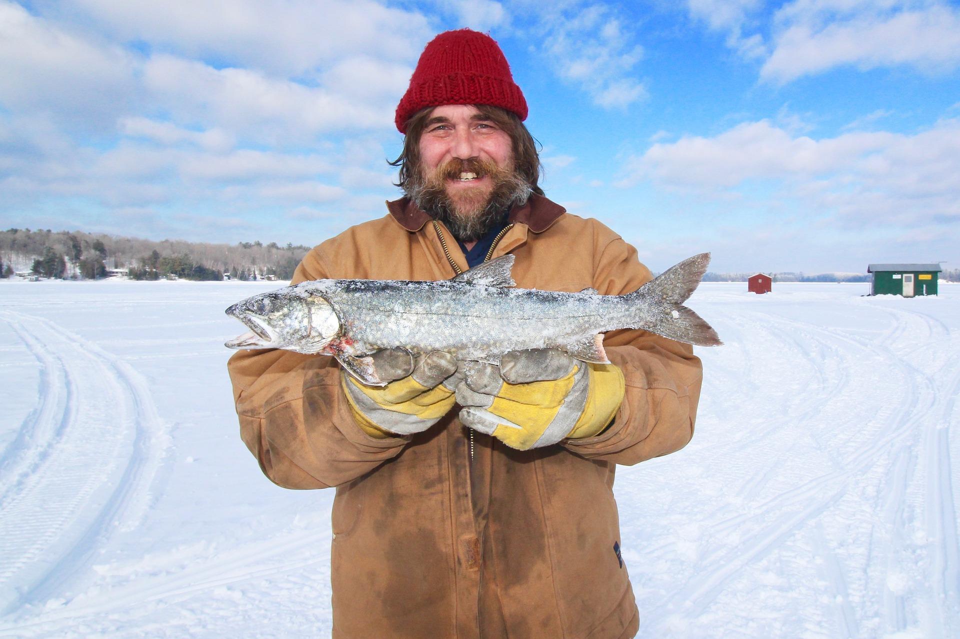 Bewaren en invriezen van verse vis